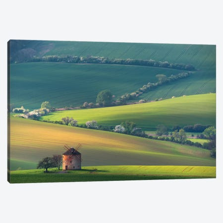 About Forms & Line'S Canvas Print #OXM5458} by Vlad Sokolovsky Canvas Wall Art