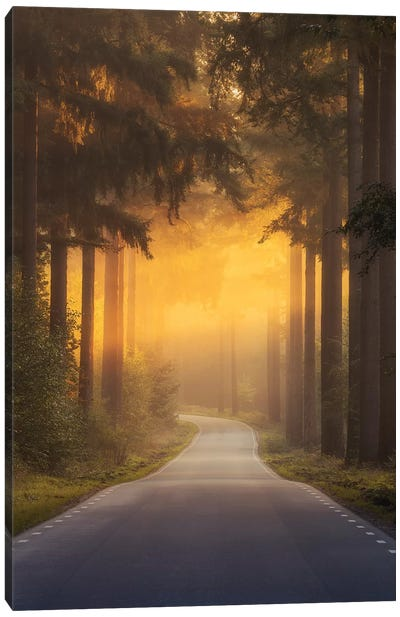 Pursuing The Light At The End Of The Road Canvas Art Print