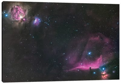 Orion Nebula And The Horsehead Canvas Art Print