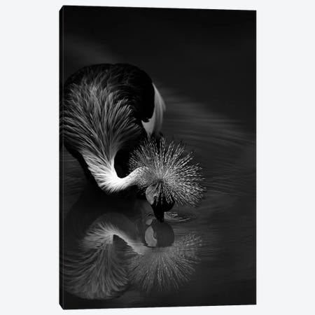 The Reflection Canvas Print #OXM5490} by C.S. Tjandra Canvas Wall Art