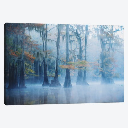 Foggy Swamp Morning 3-Piece Canvas #OXM5500} by Aijing H. Canvas Art