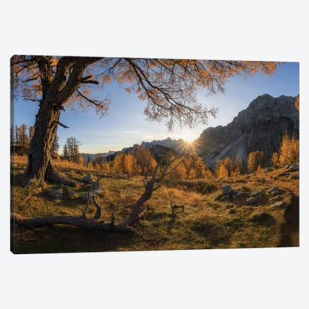 Autumn Paradise Canvas Print #OXM5502} by Ales Krivec Canvas Artwork