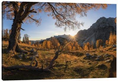 Autumn Paradise Canvas Art Print