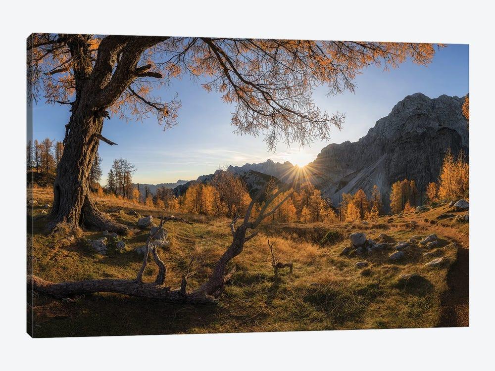 Autumn Paradise by Ales Krivec 1-piece Canvas Print