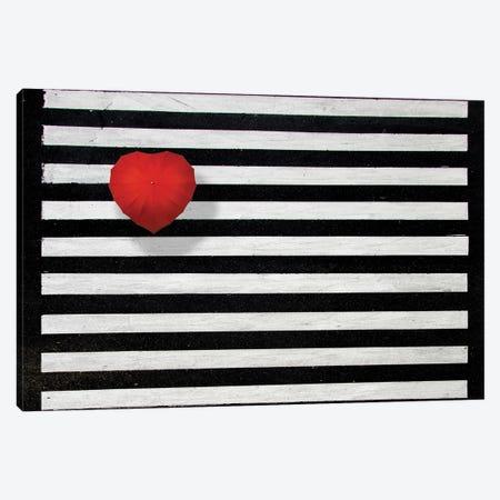 Red Umbrella Canvas Print #OXM5509} by Alfonso Novillo Canvas Artwork