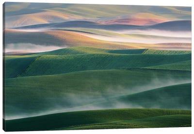 Foggy Morning Canvas Art Print