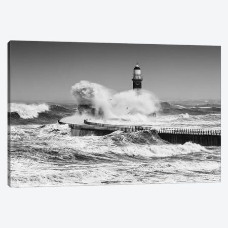 Power Of The Sea Canvas Print #OXM5536} by Daniel Springgay Canvas Art