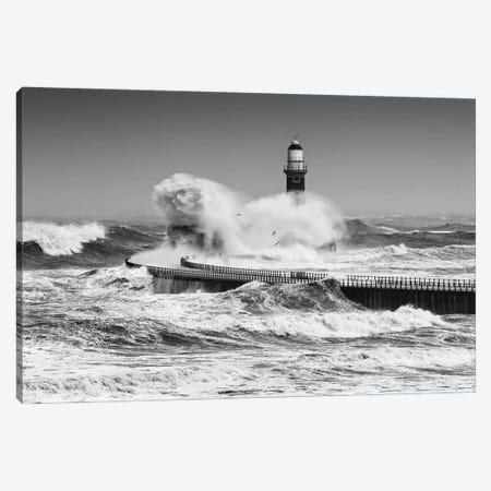Power Of The Sea Canvas Print #OXM5536} by Daniel Springgay Canvas Art