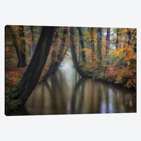 Enchanted Autumn Canvas Print #OXM5563} by Fiorenzo Carozzi Canvas Wall Art