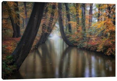 Enchanted Autumn Canvas Art Print