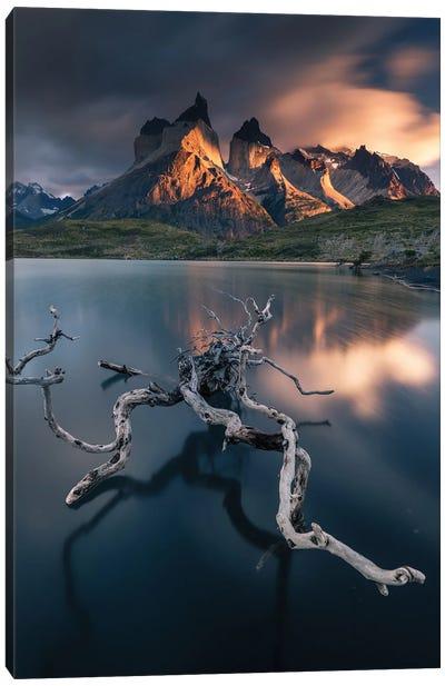 Torres Del Paine Canvas Art Print