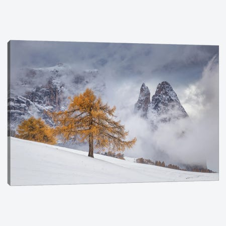 Between Seasons Canvas Print #OXM5602} by Lazar Ioan Ovidiu Canvas Art Print