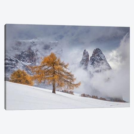 Between Seasons Canvas Print #OXM5602} by Lazar Ioan Ovidiu Canvas Art Print