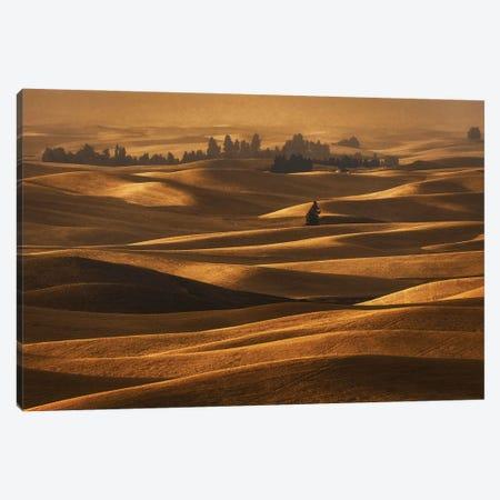 Harvest Season Canvas Print #OXM5610} by Lydia Jacobs Canvas Art