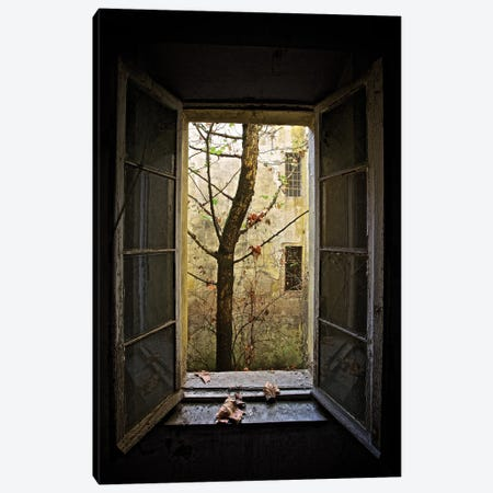 Autumn In Asylum Canvas Print #OXM5615} by Marco Tagliarino Canvas Print