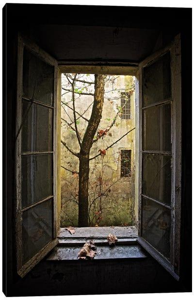 Autumn In Asylum Canvas Art Print