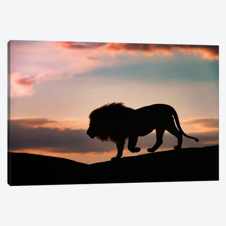 Sunset In The Serengeti Canvas Print #OXM5620} by Mario Vigo Art Print