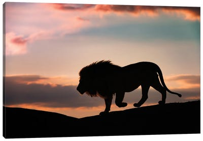 Sunset In The Serengeti Canvas Art Print