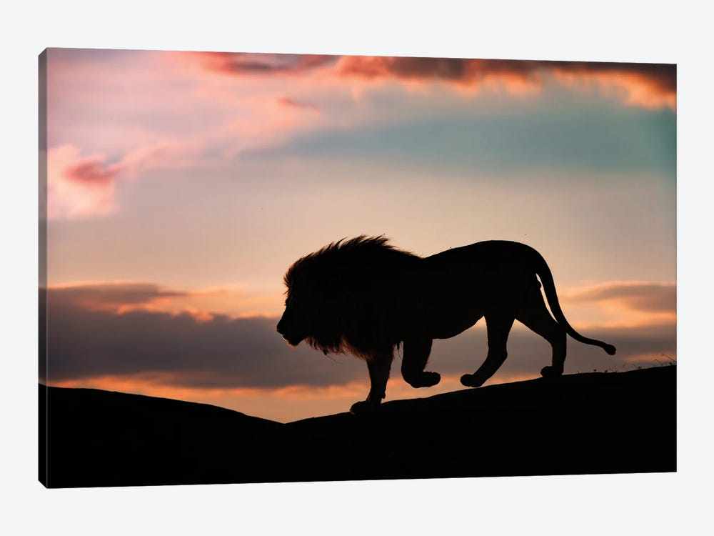 Sunset In The Serengeti by Mario Vigo 1-piece Canvas Print