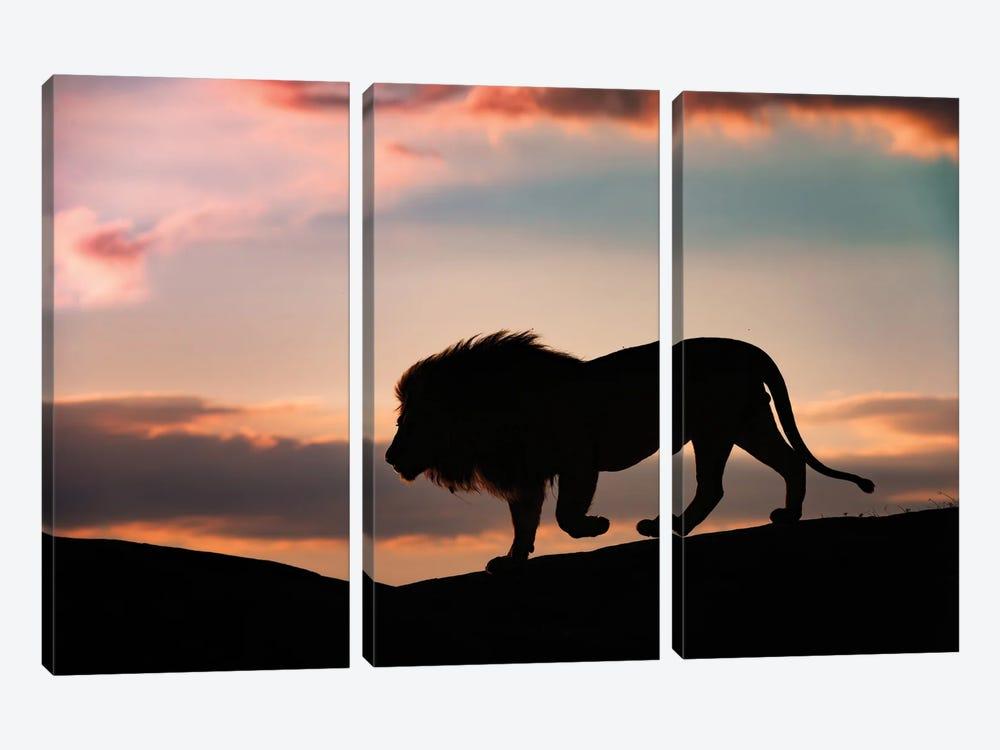 Sunset In The Serengeti by Mario Vigo 3-piece Art Print