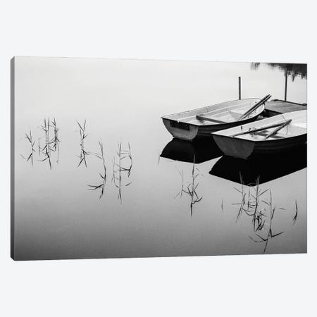 Morning By The Lake Canvas Print #OXM5627} by Mats Persson Canvas Art