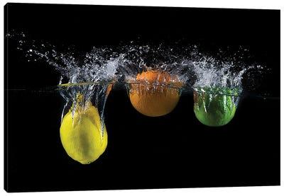 Triple Citrus Splash Canvas Art Print