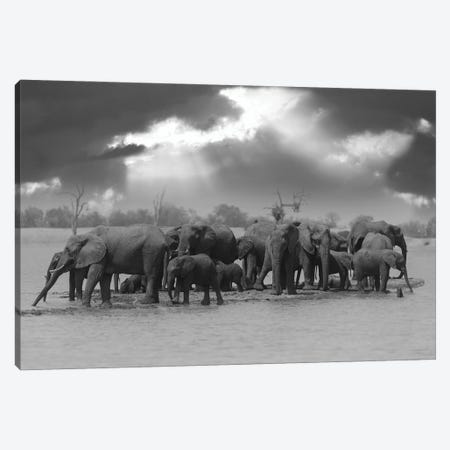 Big Family Canvas Print #OXM5652} by Ozkan Ozmen Canvas Wall Art