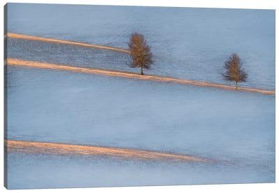 Light Traces Canvas Art Print