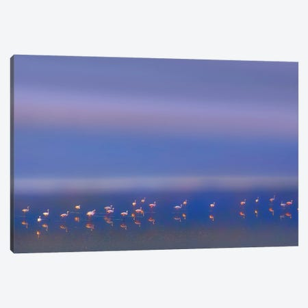 Early Morning Canvas Print #OXM5660} by Phillip Chang Canvas Art Print