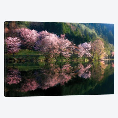 Another World Canvas Print #OXM5693} by Takeshi Mitamura Canvas Art