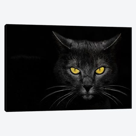 Monster Kill Canvas Print #OXM573} by Davorin Baloh Canvas Wall Art