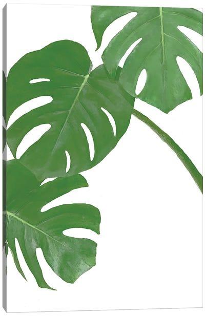 Monstera Green I Canvas Art Print