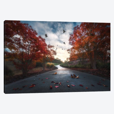 Fall Colors Canvas Print #OXM5789} by Aidong Ning Canvas Wall Art