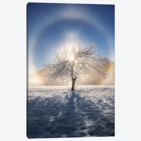 Ring Of Frost Canvas Print #OXM5792} by Ales Krivec Canvas Print