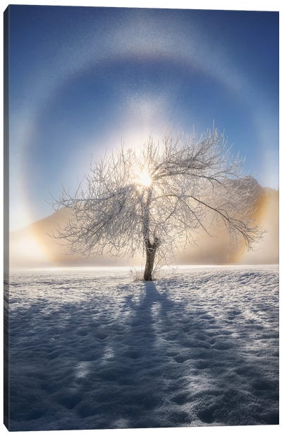 Ring Of Frost Canvas Art Print