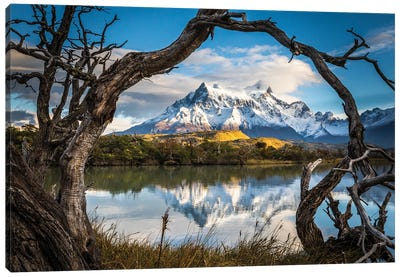 Patagonia Canvas Art Print