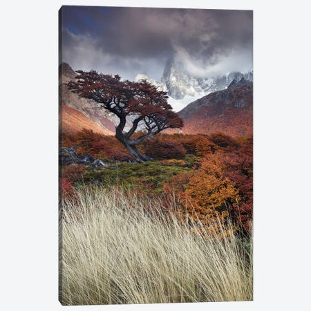 Mists Of Time Canvas Print #OXM5802} by Andrea Pozzi Canvas Print