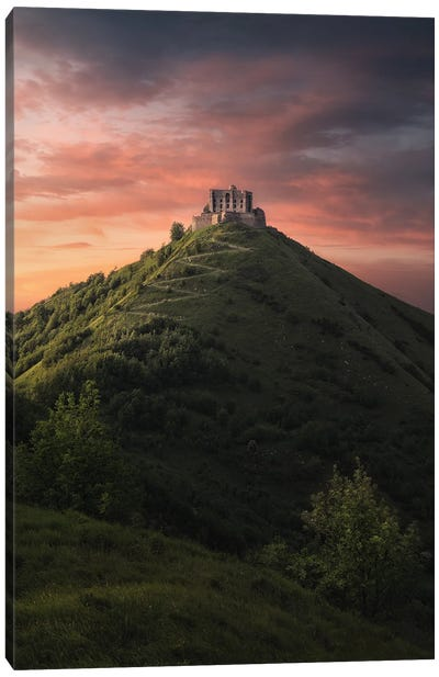 The Castle On The Hill Canvas Art Print