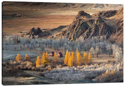 Oasis In The Mountains (Altai) Canvas Art Print