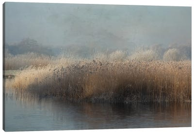 Winter In Holland Canvas Art Print