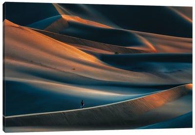 Magnificence Of Desert X Canvas Art Print