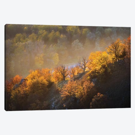 Autumn Trees Canvas Print #OXM5838} by Burger Jochen Canvas Wall Art