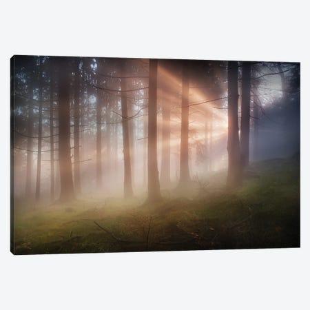 Evening Canvas Print #OXM5839} by Burger Jochen Canvas Wall Art
