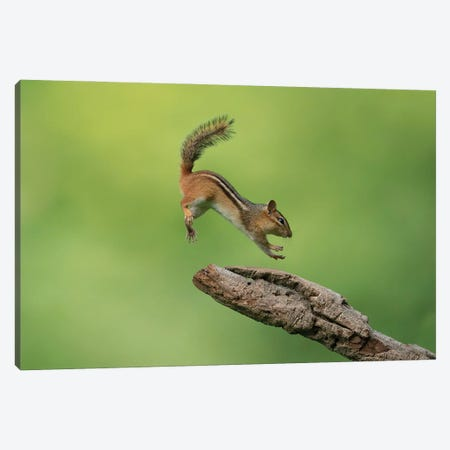 Almost There Canvas Print #OXM5852} by Christopher Schlaf Canvas Art
