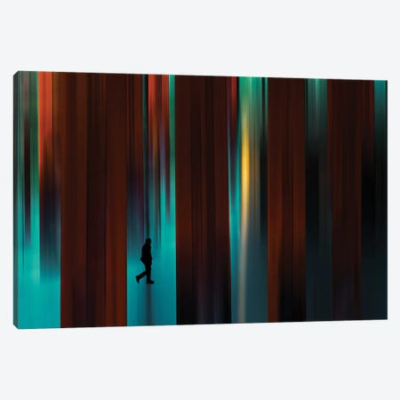 Untitled - Series Of Other Spaces Canvas Print #OXM5886} by Gaia Rampon Canvas Wall Art