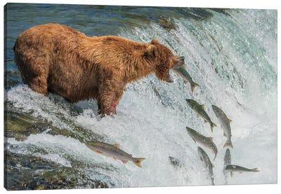 Perfect Fishing Spot Canvas Art Print
