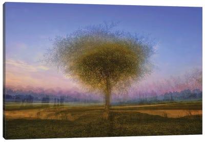 Monets Lullaby Canvas Art Print