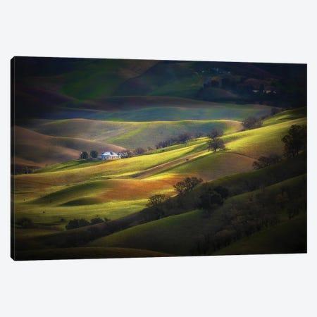 Spring At Trivalley Canvas Print #OXM5939} by Jenny Qiu Canvas Print