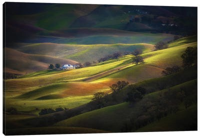 Spring At Trivalley Canvas Art Print