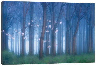Fairyland Ii Canvas Art Print